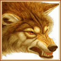 волчья подкладка